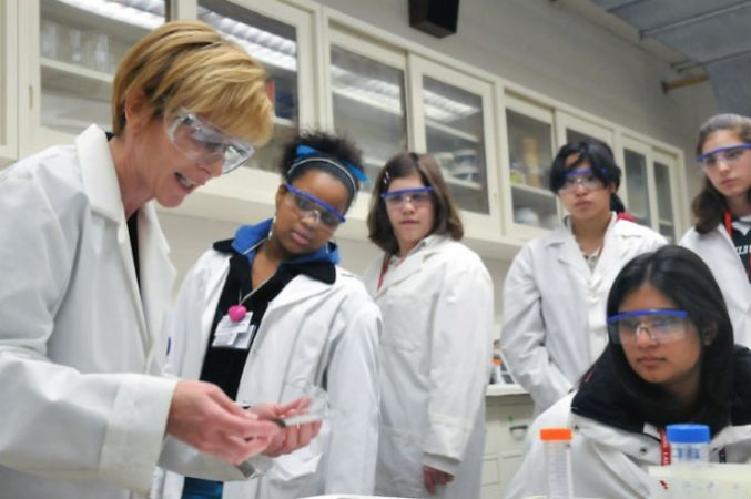 Young people studying STEM