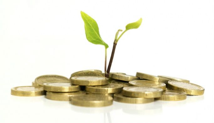 A seedling growing out of a stack of coins, representing asset management