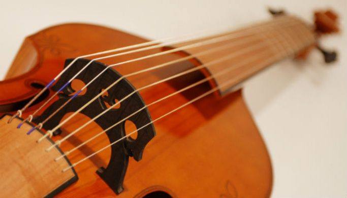 The head of a stringed instrument